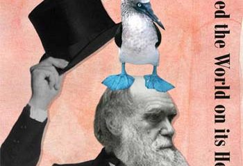 Did Darwin's Pigeons Support his Theory of Evolution?