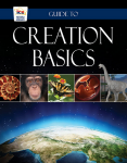 Creation Basics - Guide to