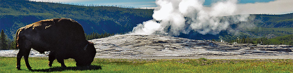 Yellowstone Creation Adventure Tour @ Yellowstone National Park Tour and Lodging at Old Faithful Christian Ranch