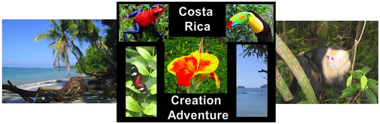costa rica header.png