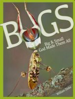 Bugs Big and Small God Made Them All