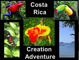 costa rica collage.png