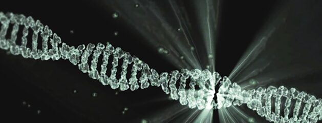 """""""Striking"""" – Complexity and the Incredible Functional Nature of DNA"""