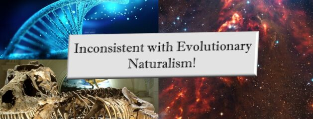 If you are an evolutionist, consider these: